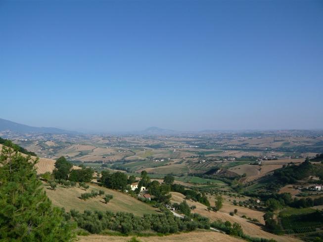 bellante1