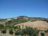 La collina di Tortoreto